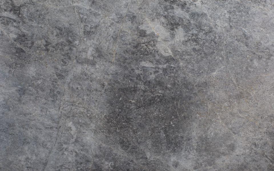 Spider Grey